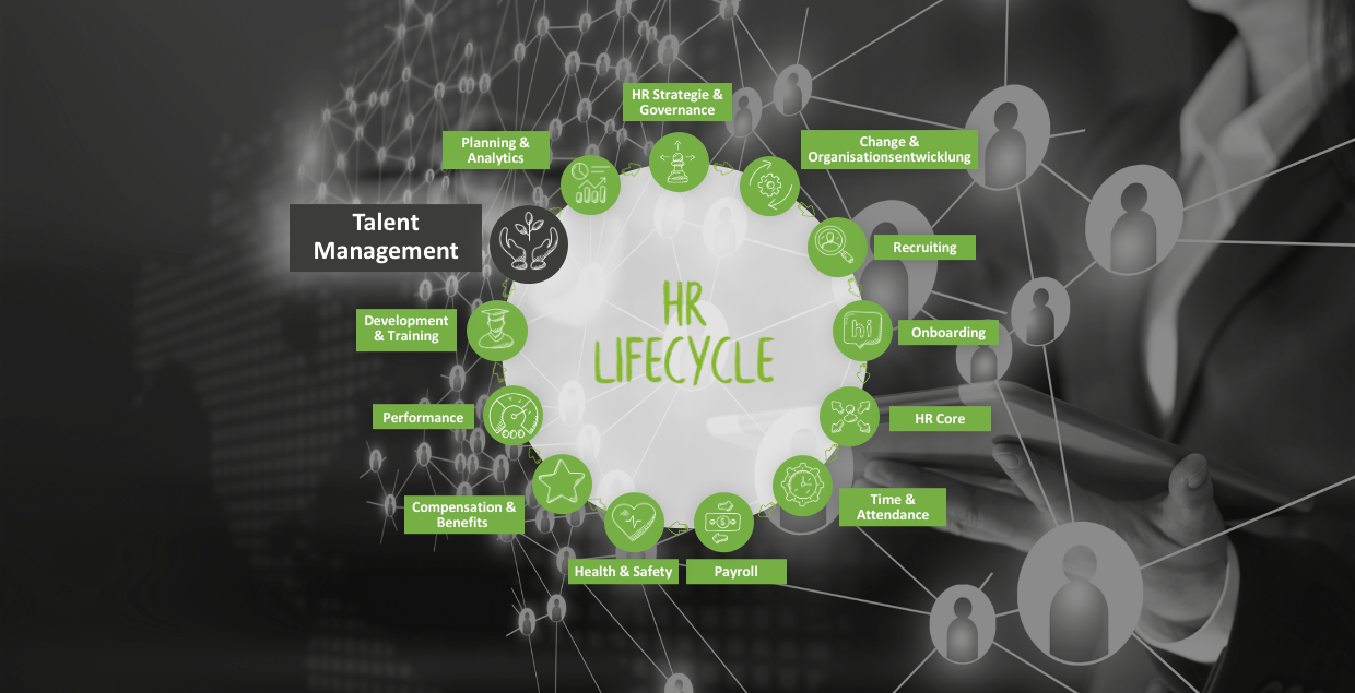 Talent Management im HR Lifecycle